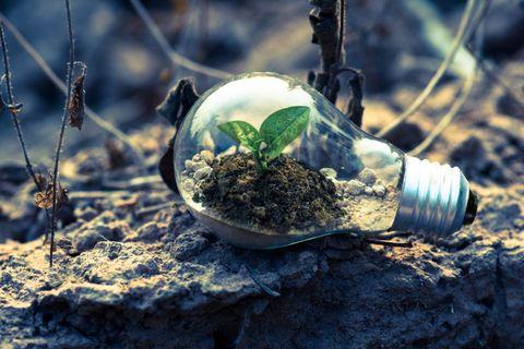 www.greeningteh.com - soluzioni per una economia sostenibile